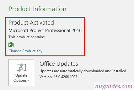 your project and visio has been activated